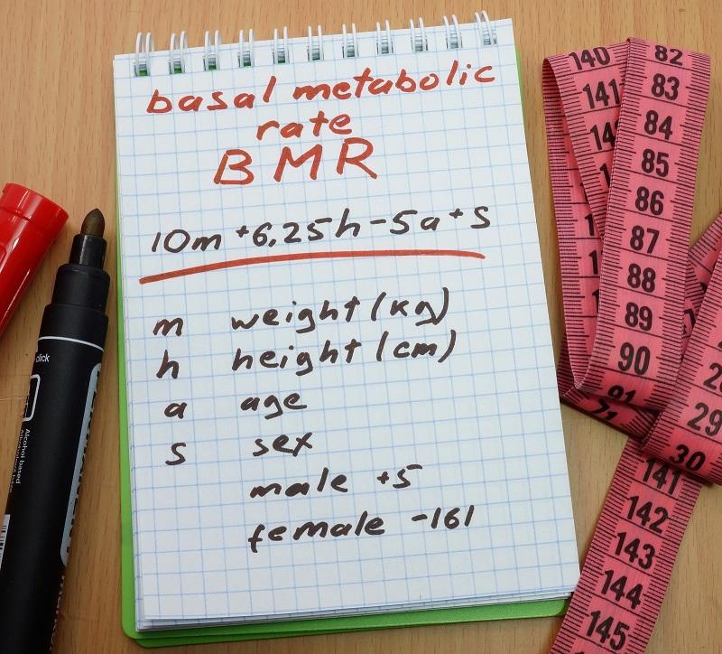 Anhand von Formeln lässt sich der Grundumsatz einfach berechnen