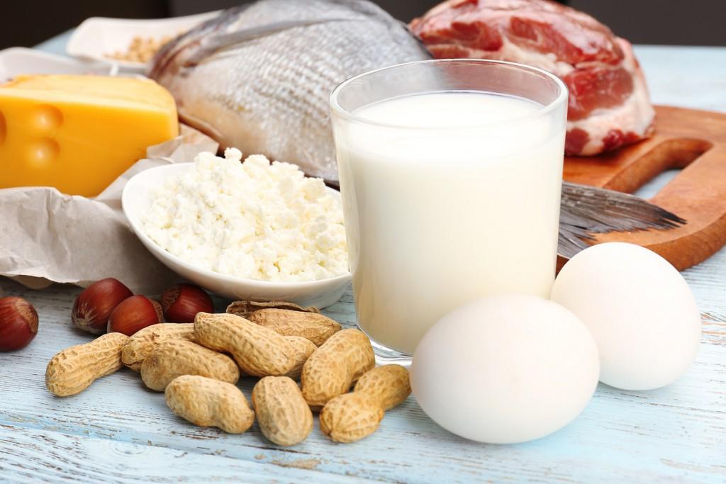 Wie effektiv ist eine Eiweiß Diät ?